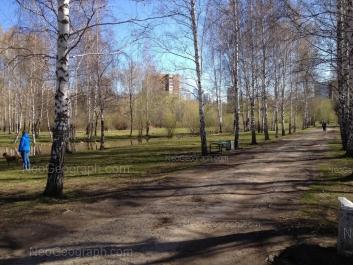 View to: Yasnaya street, 14. Yekaterinburg (Sverdlovskaya oblast)