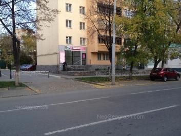 View to: Rozi Luksemburg street, 9. Yekaterinburg (Sverdlovskaya oblast)