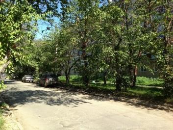 На фото видно: Агрономическая улица, 59. Екатеринбург (Свердловская область)