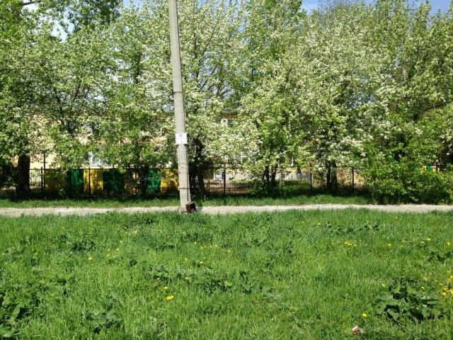 Адрес(а) на фотографии: Теплоходный проезд, 3, Екатеринбург