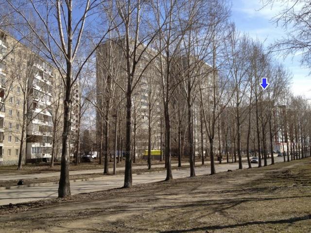 Address(es) on photo: Bebeliya street, 138, 146, 148, Yekaterinburg