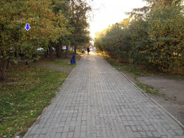 Адрес(а) на фотографии: улица Крауля, 73, 76, 81, Екатеринбург