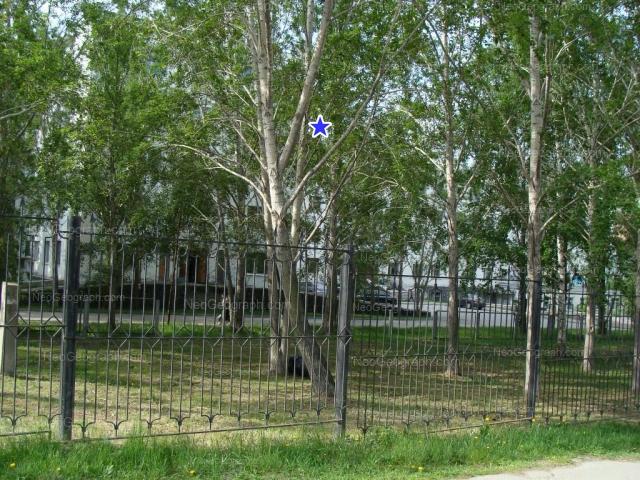 Адрес(а) на фотографии: улица Декабристов, 15, Екатеринбург