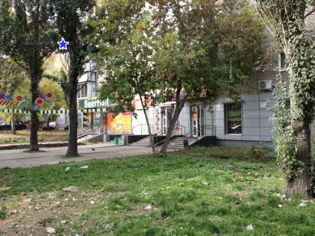 Адрес(а) на фотографии: улица Белинского, 141, Екатеринбург