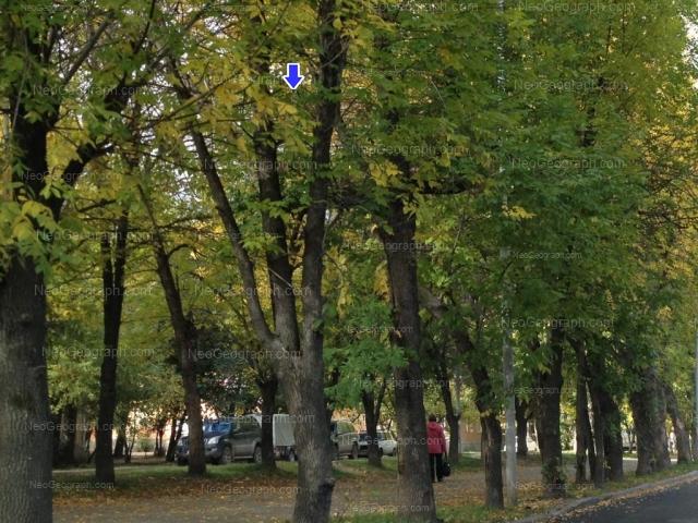 Адрес(а) на фотографии: Кировградская улица, 55, 59, 61, 63, Екатеринбург