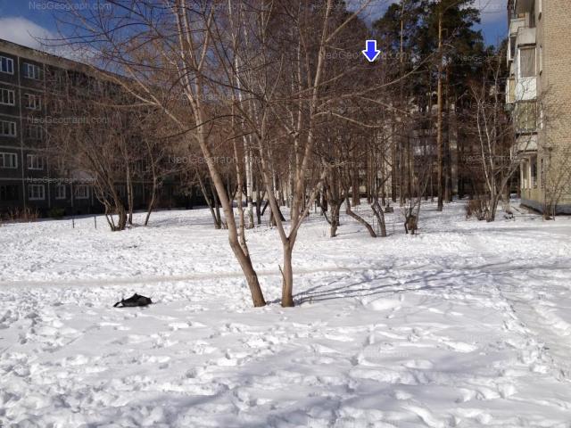Адрес(а) на фотографии: улица Шаумяна, 98/2, 98/3, Екатеринбург