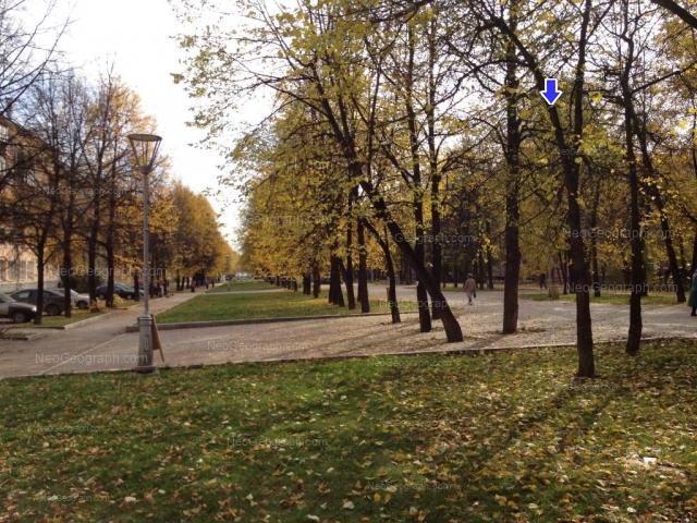Адрес(а) на фотографии: бульвар Культуры, 9, 14, 20, Екатеринбург